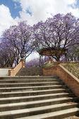 Beautiful stairs — Foto Stock