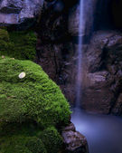 Moss 瀑布 — 图库照片