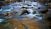 Wide Creek — Stock Photo