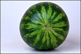 Melon — Stock Photo