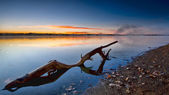 Sunrise waterlog — Stockfoto