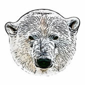 Grunge style head portrait of a polar bear female. The most dangerous animal of the Arctic region. Wild beauty of severe raptor. — Stock Vector