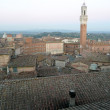 Aerial View of the city centre, Siena, Italy — Stock Photo