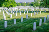 Rows of White Grave Stones — Stock Photo