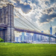 Brooklyn Bridge — Stock Photo #30059677
