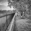 Jogging in Central Park, New York — Stock Photo #30304447