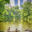 Central Park, Manhattan — Stock Photo