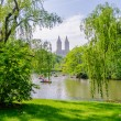 Central Park, Manhattan — Stock Photo #30304899
