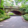 Central Park, Manhattan — Stock fotografie #30306097