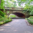 Central park, manhattan — Stockfoto #30306097