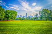 Central park, manhattan — Stockfoto