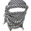 Keffiyeh — Stock Photo #18797881