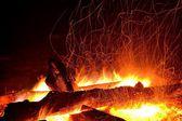 Adirondack Bonfire — Stock Photo