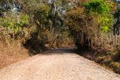 Road on path of farm — Stock Photo