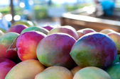 Close of many mangos — Stock Photo