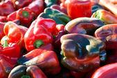 很多红色和绿色辣椒的关闭 — 图库照片