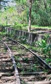 Abandoned railroad — Stock Photo