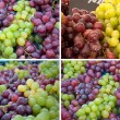Stock Photo: Collection grape