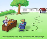 Dog may have problem with relocation interview — Stock Photo