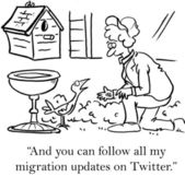 You can follow all my migration updates — Stock Photo