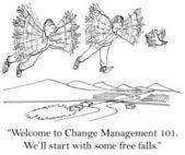 De vogel zal beginnen sommige vrije falls — Stockfoto