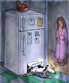 Pies wychodzi z lodówka drzwi — Zdjęcie stockowe