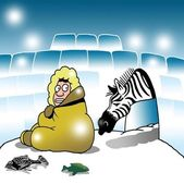 Surprised Eskimo sees a zebra in igloo — Stock Photo