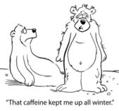 Caffeine kept bear up all winter — Stock Photo