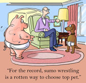 Dog and pig wrestle disagree on how to choose winner — Stock Photo