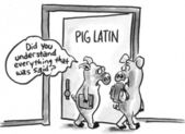 Even the pigs don't understand Pig Latin — Stock Photo