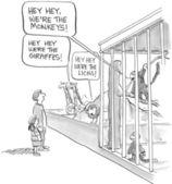 Hey hey we're the monkeys and the giraffes — Stock Photo
