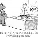 Ilustração dos desenhos animados. Mantenha-me informado de humor o rebanho — Foto Stock