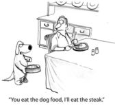 Cartoon illustration. Steak for dog — Stock Photo