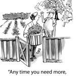 Man harvests money tree — Stock Photo