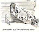 Noah recoger los animales en el arca — Foto de Stock
