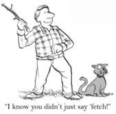 Cat resents being told to fetch — Stock Photo