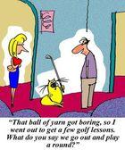 Cat plays golf — Stock Photo