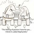 Two elephants on park bench — Stock Photo