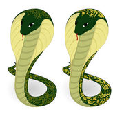 Green snakes with floral pattern — Stock Vector