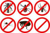 Há insetos — Vetorial Stock