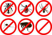 No insectos — Vector de stock