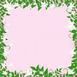 Frame with white flowers — Stock Vector