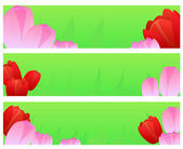 Banners with tulips — Stock Vector