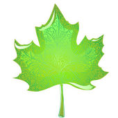 Green maple leaf — Stock Vector