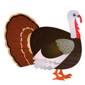 Cartoon turkey — Stock Vector
