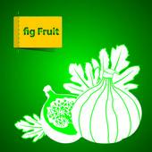 Illustrazione di frutta — Vettoriale Stock