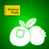Fruits Illustration — Stock Vector