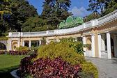 Sochi Arboretum — Stock Photo