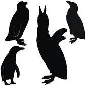 Posing penguins — Stock Vector