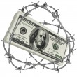 Money wrapped in barbed wire — Stock Photo